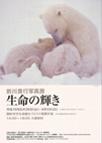 maekawainfo.jpg
