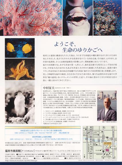 nakamura-ura.JPG